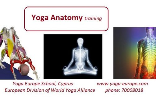 Yoga Anatomy Training