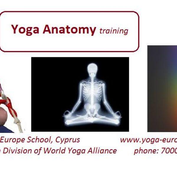 Yoga Anatomy Training